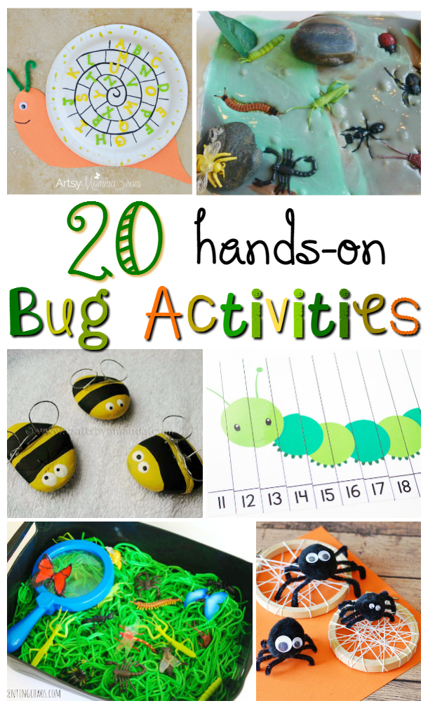 Hands-On Bug Activities for Kids