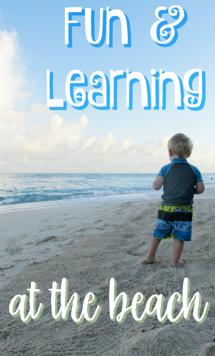 Fun & Learning at the Beach