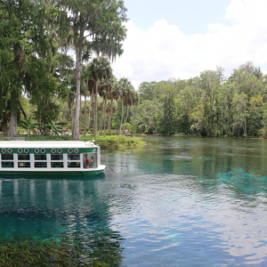 What to do in Ocala/Marion County, Florida with Little Kids this Summer