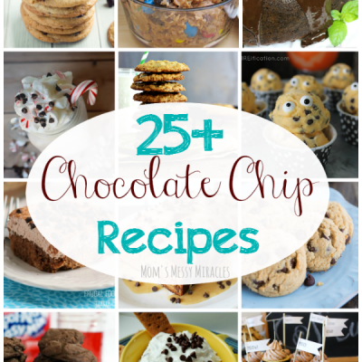 25+ Chocolate Chip Recipes