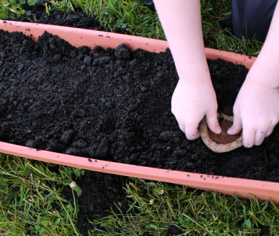 How to Get Your Kids to Love Gardening