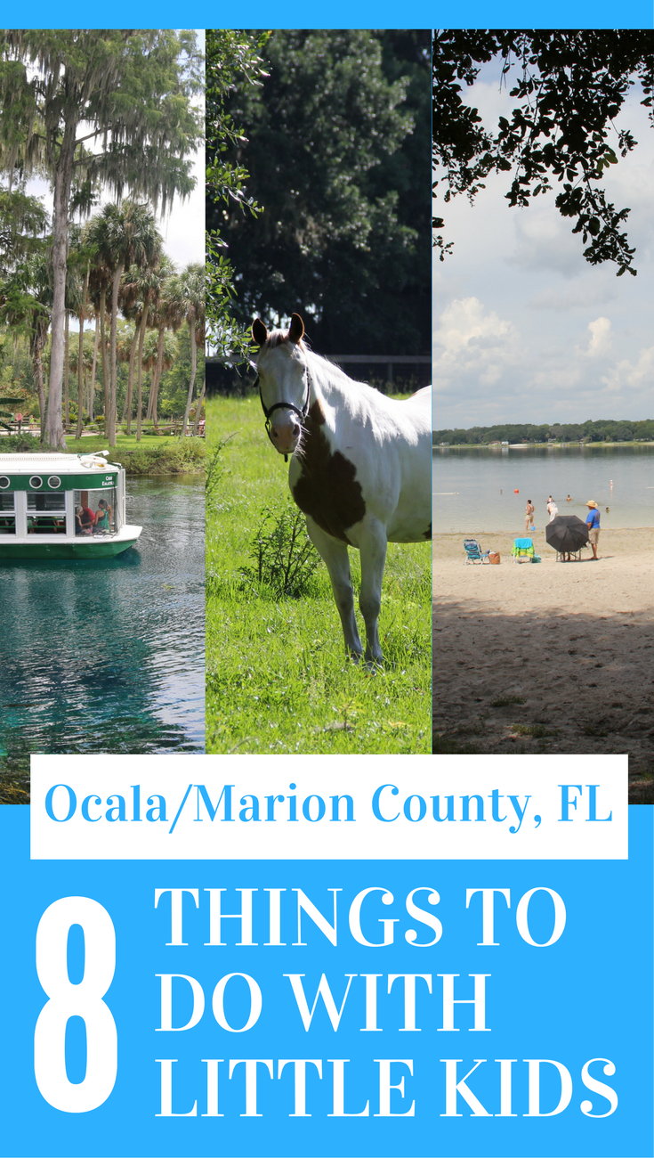 Visit Ocala/Marion County, FL with little kids! Here are 8 great ideas for things to do in the area!