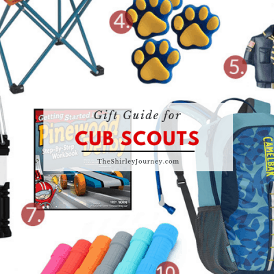 Gift Guide for Cub Scouts